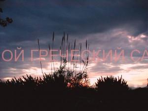 Грейия закат солнца фото