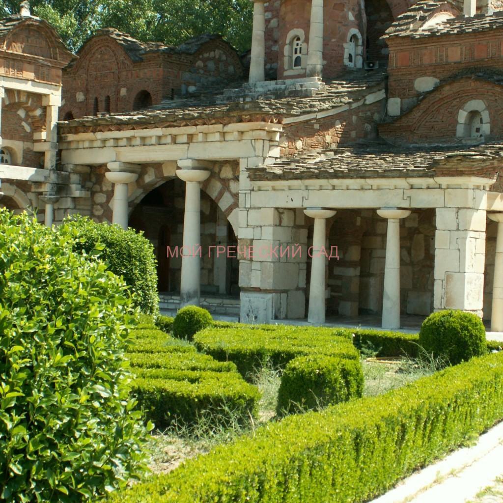 Небольшой ухоженный дворик с аккуратно подстриженными самшитами