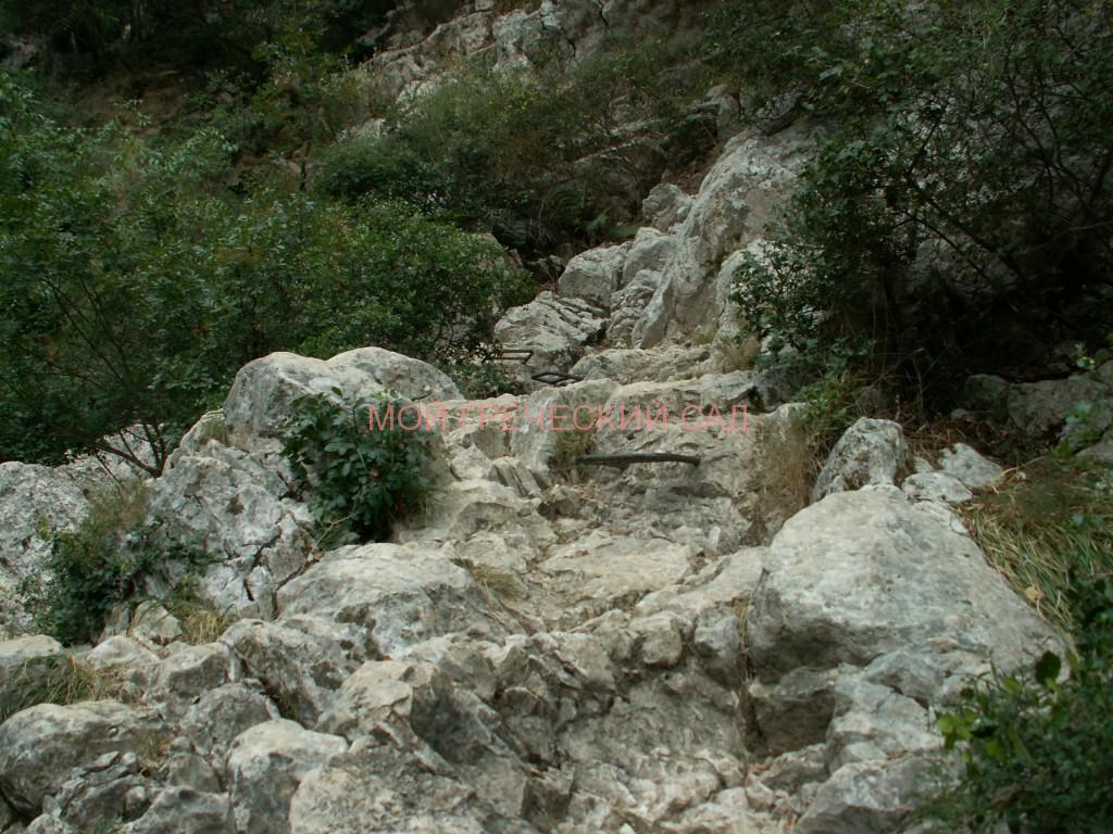 Каменистая тропа в Полилимнио фото