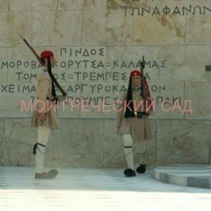 фото греческие эвзоны