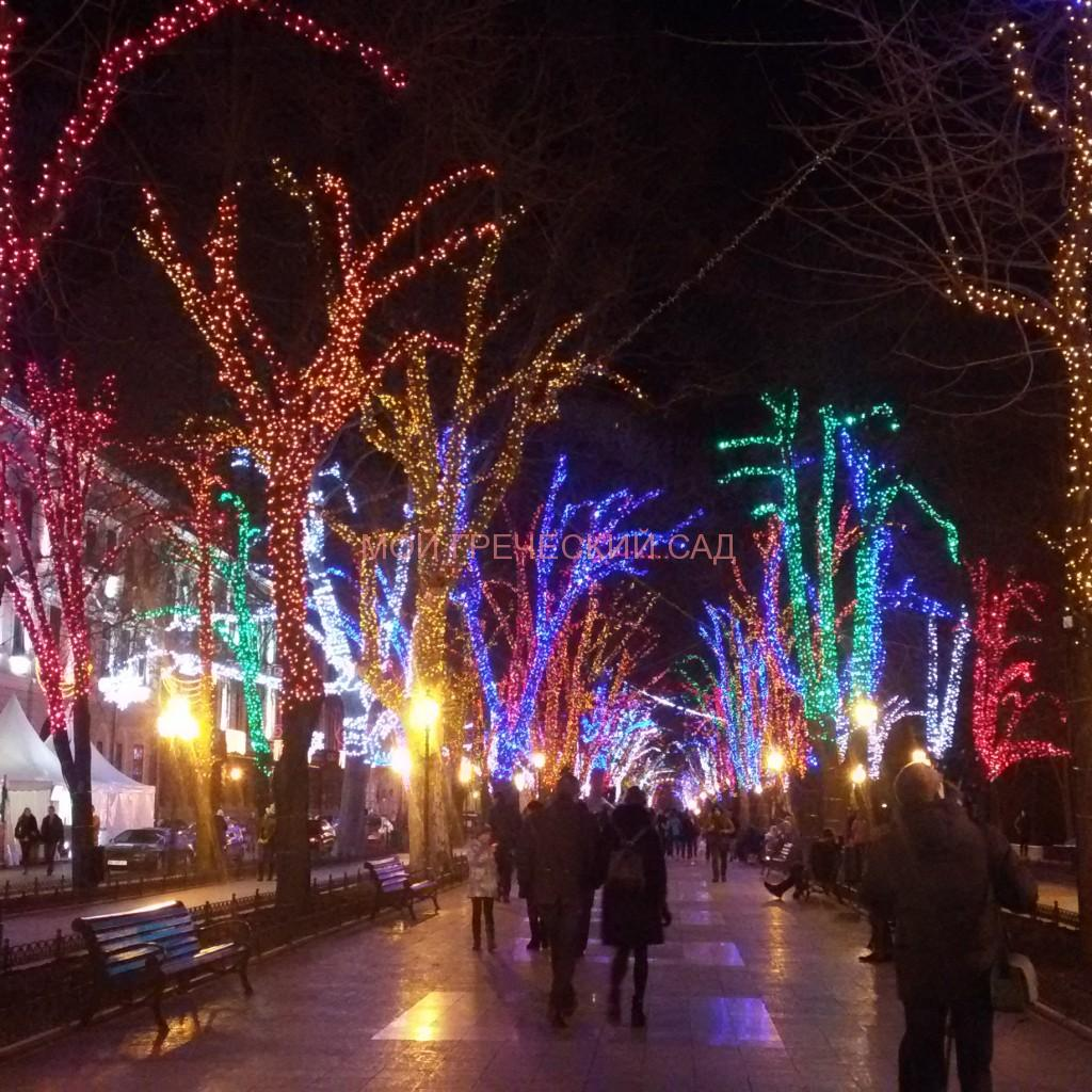 Приморский бульвар вечером фото