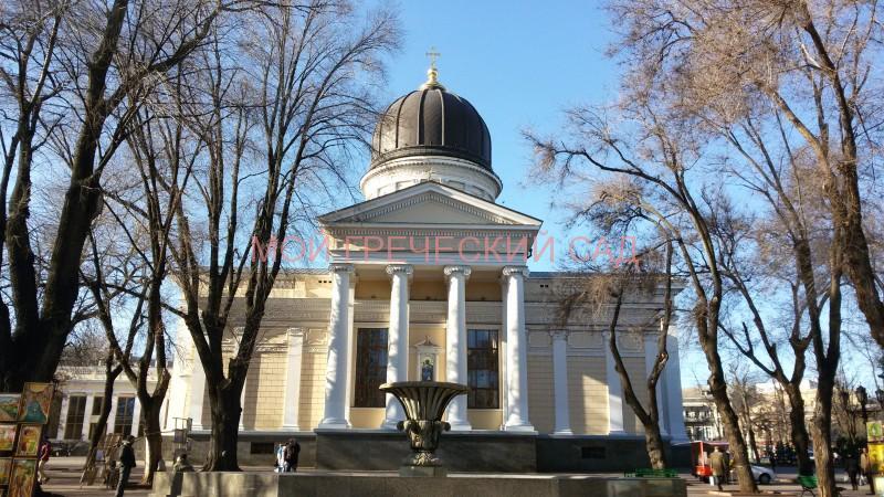 Храмы Одессы фото