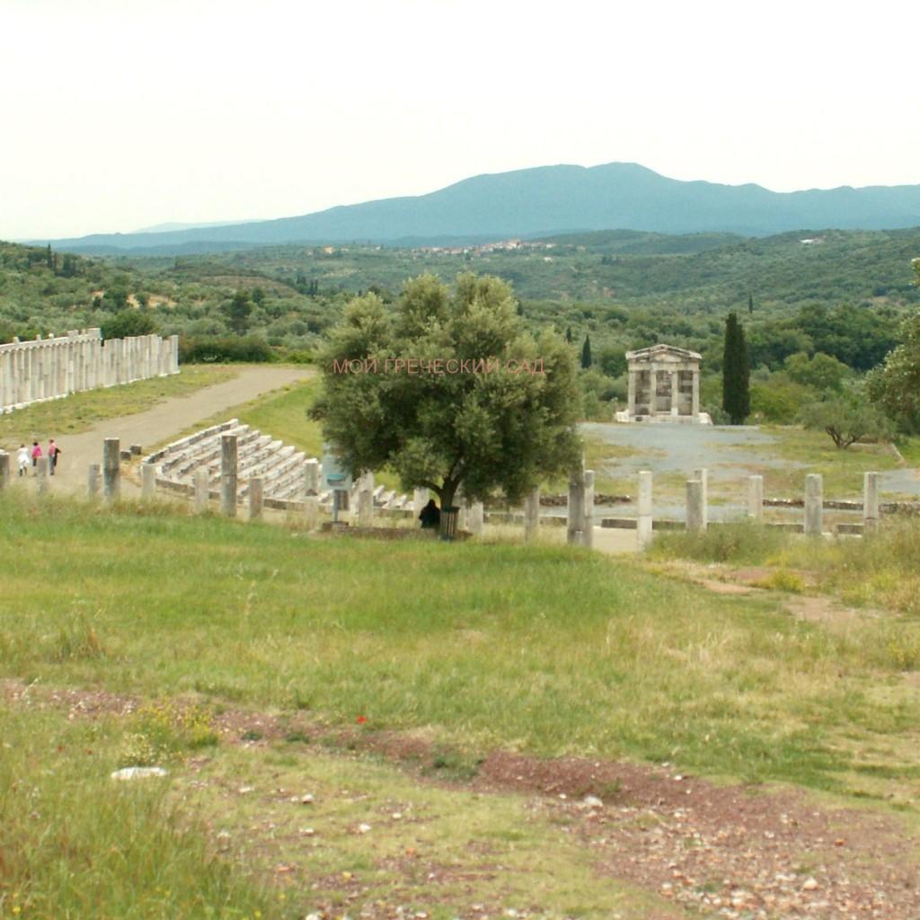 постройки древней греции