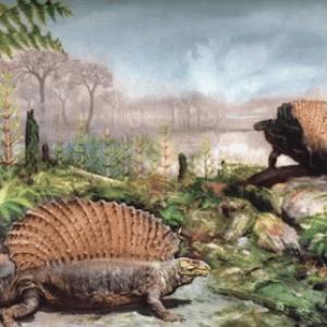 животные и растения каменноугольного периода
